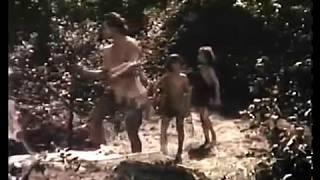 Prehistoric Women (1950)