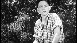 Rolling Home (1946)