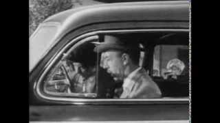 Lay That Rifle Down (1955)